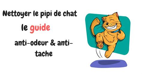 odeur pipi chat tapis nettoyer urine chat tapis plusieurs with nettoyer urine chat tapis brosse tapis