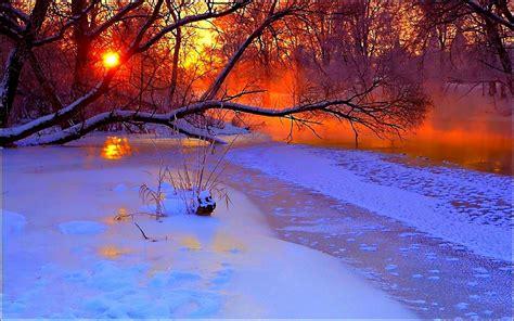 Gefrorener See Snowybäume Sonnenuntergang