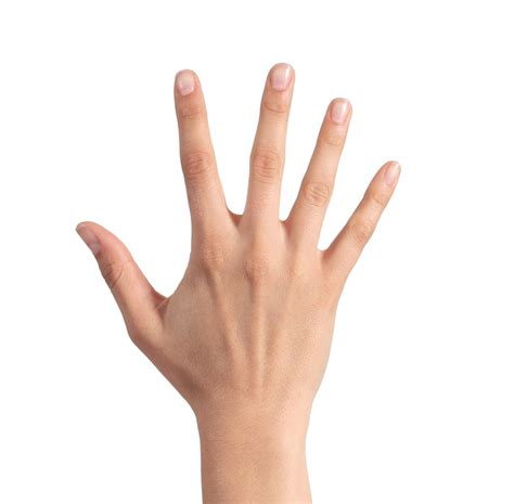 Five Fingers by Is The Invisible World The Real World