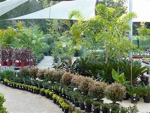 Garden Centre and Nursery >Sunshine Coast Queensland