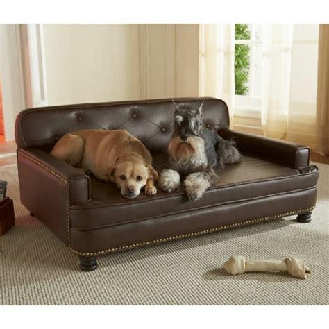 canapé pour grand chien canape pour petit chien pas cher 28 images canape pour