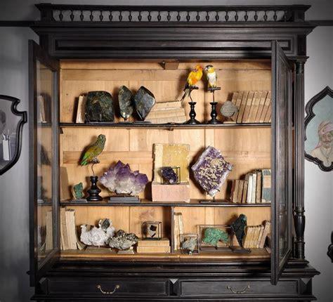 Cabinets De Curiosité by 682 Best Cabinet Of Curiosities Images On