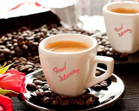 Best Good Morning Images Collection & Wallpapers For