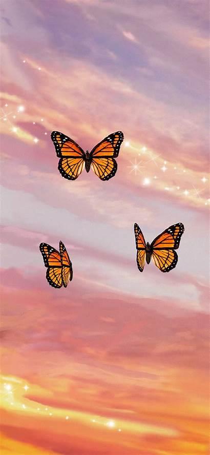 Aesthetic Butterfly Iphone Glitter Butterflies Sunset Soft