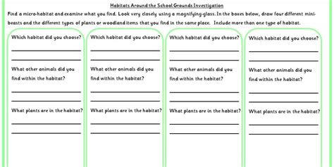 habitats around the school grounds investigation