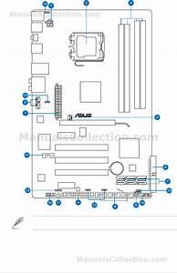 Asus P5q Deluxe Manual Pdf