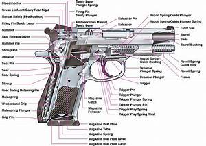 Dawn The Apocalypse  Firearms Principles  U2013 Guns A Tootin