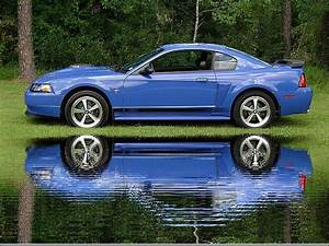 2003 Ford Mustang - Pictures - CarGurus
