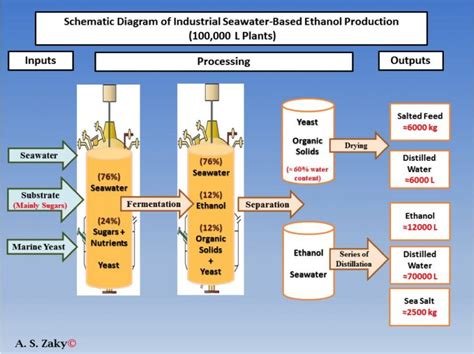 Biofuel Engine Diagram by Producing Biofuel With Sea Water Cost Effective And Eco