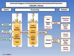 Producing Biofuel With Sea Water Cost