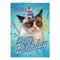 happy birthday cat happy birthday grumpy cat greeting cards zazzle