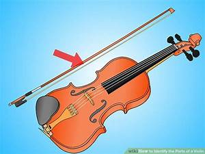 How To Identify The Parts Of A Violin  10 Steps  With
