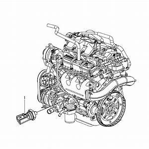 Volkswagen Routan Oil Pressure Switch  Senders