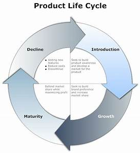 4 Step Product Life Cycle