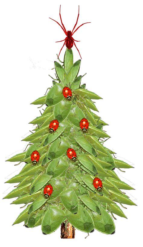 presents   christmas tree
