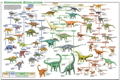 Why Are Dinosaurs Extinct ?