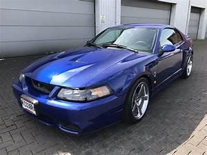 For sale mustang svt cobra terminator 2003 sonic blue