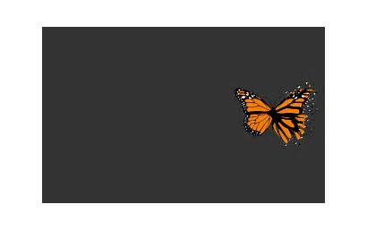 Simple Wallpapers Background Butterfly Grey Desktop Yellow