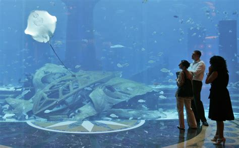 dubai hotel aquarium atlantis dubai and the uae photos the big picture boston