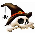 Halloween Skull Transparent Background Freeiconspng