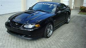 Expired - 2003 Black Mustang Mach 1only 1375 Original Miles | Mustang Forums at StangNet