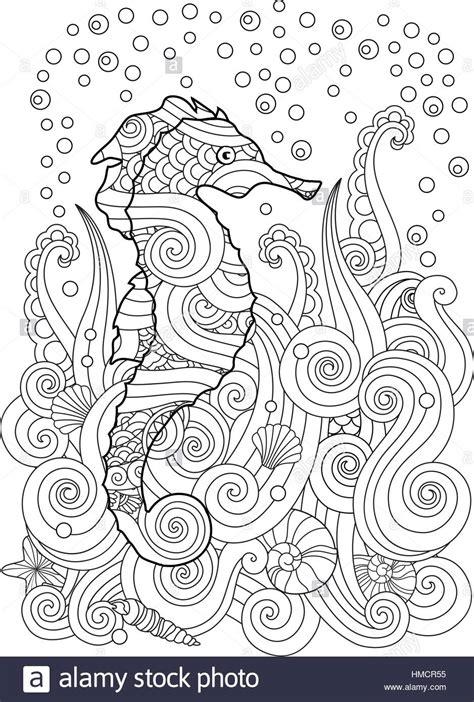 hand drawn sketch  seahorse   sea  zentangle