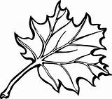 Leaf Holly Coloring Oak Printable Pages Fall Getcolorings sketch template