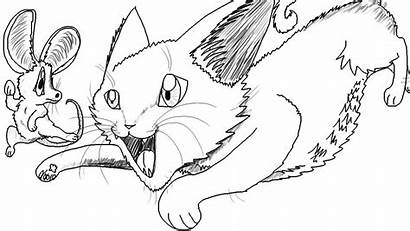 Mouse Cat Chasing Cartoon Drawing