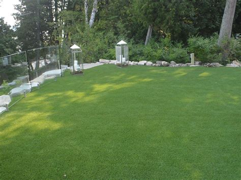 Backyard Grass by Green Lawn Sudden Valley Washington Design Ideas