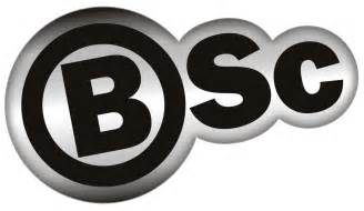 Image result for bsc logo