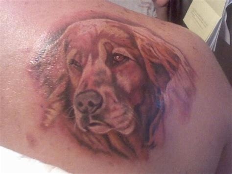 Information About Golden Retriever Tattoo Yousense Info