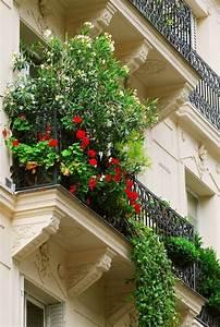 Pot Pour Balcon : les plus beaux fleurs de balcon en 47 images ~ Teatrodelosmanantiales.com Idées de Décoration