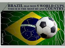 Fun and Interesting Facts About Soccer You Just Can't Miss