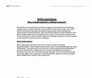 How To Write A Proposal Essay Outline Essay On Deforestation What Is An Essay Thesis also How To Write A Proposal Essay Example Essays On Deforestation Descriptive Essay Place Malayalam Essays On  How To Write An Essay For High School Students