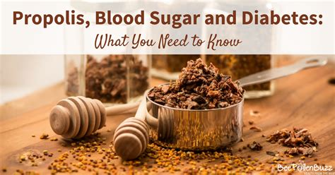 propolis balances blood sugar  improves insulin sensitivity