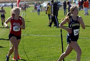 PREP CROSS COUNTRY: Baraboo's run ends at DeForest ...