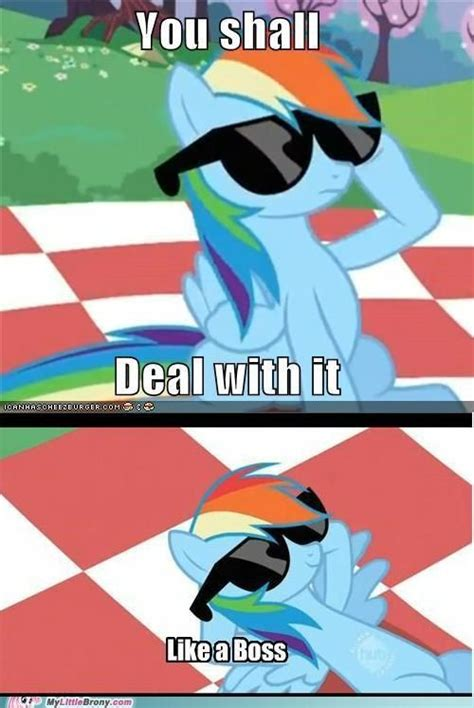 Mlp Funny Meme - 17 best images about rainbow dash on pinterest friendship twilight sparkle and my little pony