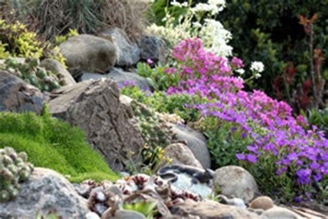 steingarten am hang steingarten anlegen und gestalten