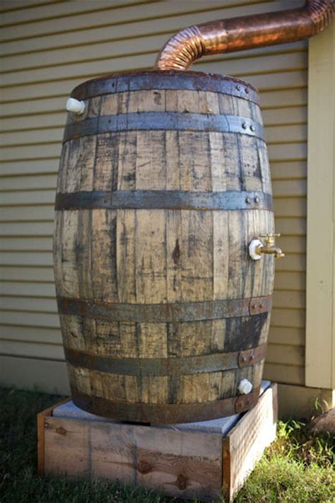 rain barrel rain water collection rain water collection