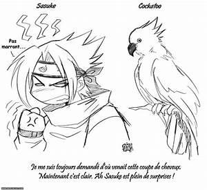 Coiffure Manga Garçon : la coupe de cheveux de sasuke ~ Medecine-chirurgie-esthetiques.com Avis de Voitures