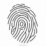 Fingerprint Coloring Clipart Pages Simple Transparent Prints Webstockreview sketch template