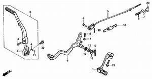 Honda Crf250r Dirt Bike Engine Diagram  Honda  Auto Fuse