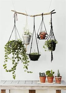 Hang It All Schwarz : die besten 17 ideen zu blumenampeln auf pinterest pflanzenschaukeln h ngende sukkulenten und ~ Bigdaddyawards.com Haus und Dekorationen