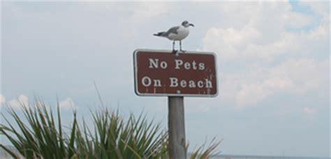 pets gulf islands national seashore  national park