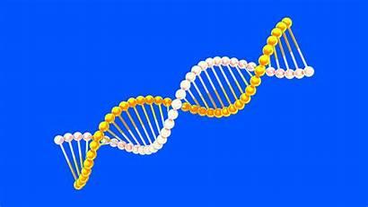 Dna Genetic Dzikir Testing Animated Cahaya Bahasa