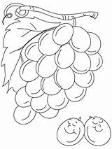 Grapes Coloring Pages Grape Sour Fruits Always Sheets Printable Clipart Vine Bestcoloringpages Crafts Para Recommended Popular Library sketch template