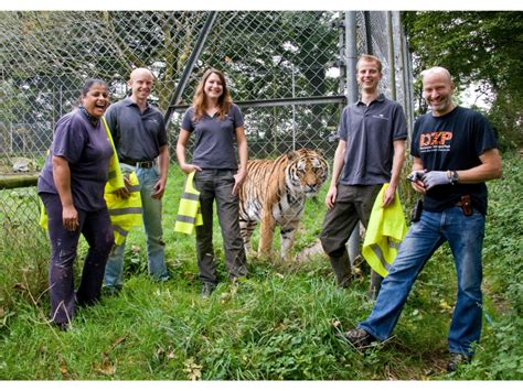 dartmoor zoo wild christmas animals encounter