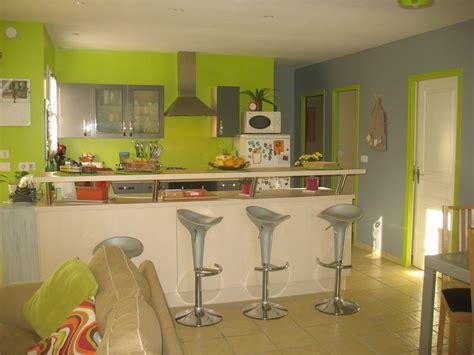 cuisine vert anis et gris deco salon vert anis et gris