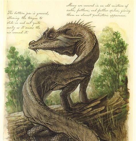 Image Oldworldwyrm Spiderwick Chronicles Wiki