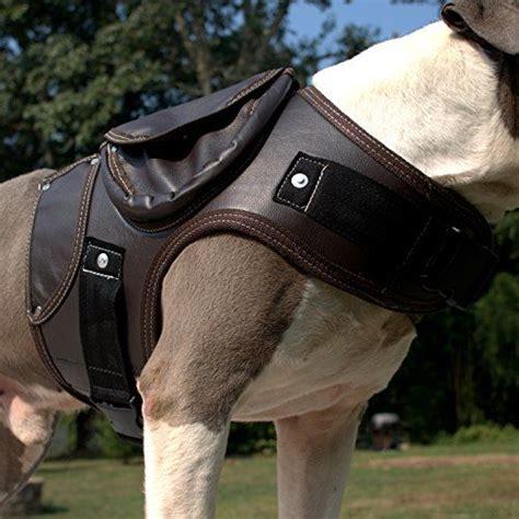 leather dog harness httplometscom